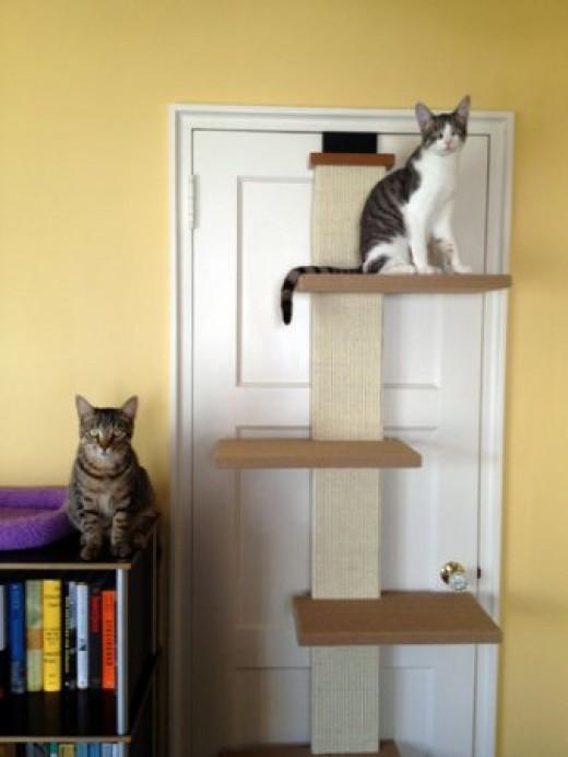 Лестница для кота
