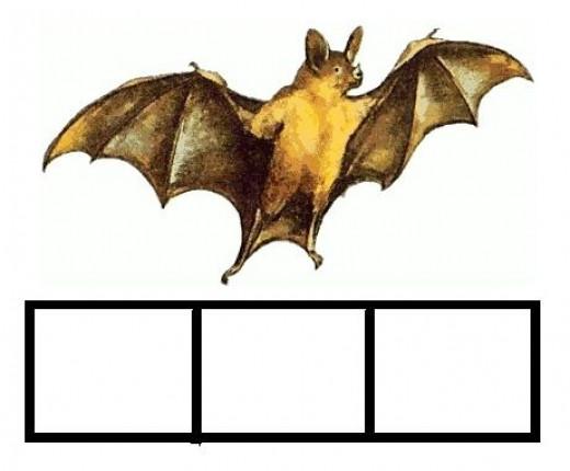 Spell Bat