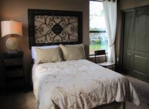 I took this photo at Solivita in the model homes.