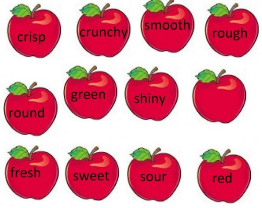 Apple Adjective Words
