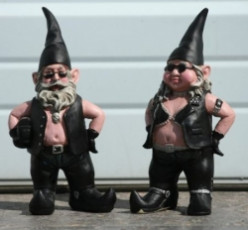 Garden Gnomes With An Attitude