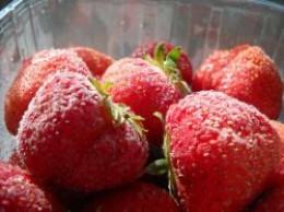 Frozen Strawberries