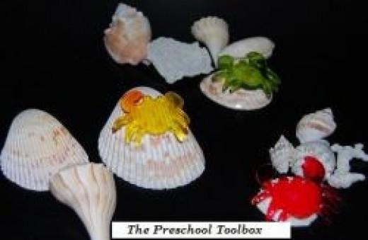 Sorting Sea Shells
