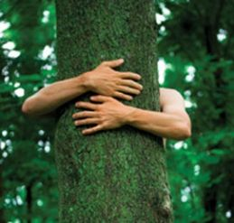you'd hug a tree too if you realized that they make the oxygen you breathe