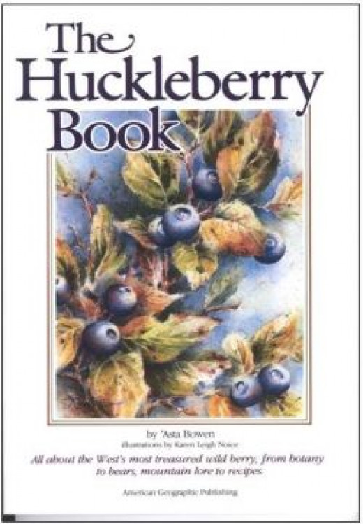 The Huckleberry Book