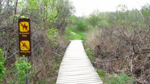 A bridged trail