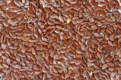 Edible Seeds - Flaxseeds