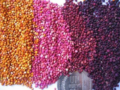 Gluten Free Grains -- Quinoa