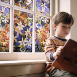 Decorative Privacy Window Films Cut Energy Costs