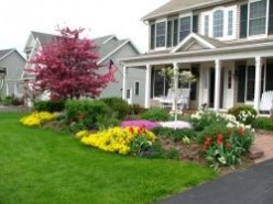 Spring Flowers and Ornamental Trees for Curb Appeal