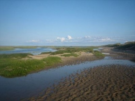 The marsh at Wood End in Provincetown. Find it by taking Commercial St. to the end.