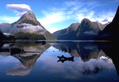 Milford Sound, New Zealand's most popular tourist destination.