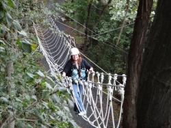 zip line cable bridge