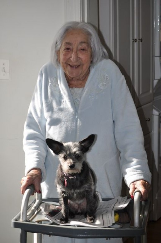 Caregivers don't have to be human. Gizmo keeps Gertie entertained.