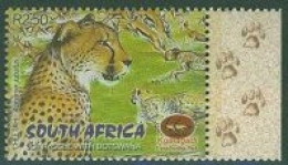 South Africa new issue