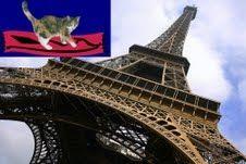 A Magic-Carpet Cat Visits Paris