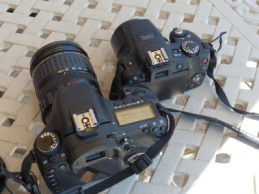 Canon's Super Zoom SX50 is Significantly Smaller Than DSLRs Such as the 7D (photo by Lisa Howard)