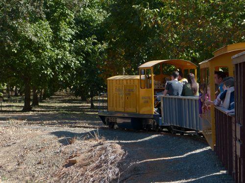Bishop's Pumpkin Farm Railroad