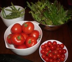 healthy christmas meal ideas - green beans