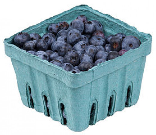 A pack of blueberries from a organic farm co-op program.