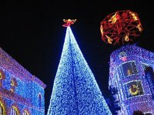 Blue tree at Spectacle of Lights - Disney