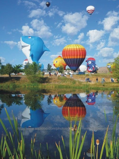 reno hot air balloon photos