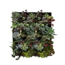 vertical garden system