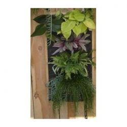 gardening vertical
