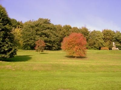 Gentle colours of early Autumn