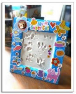 Pet Paw Print Kits: Make a Lasting Impression of Your Pet's Paw