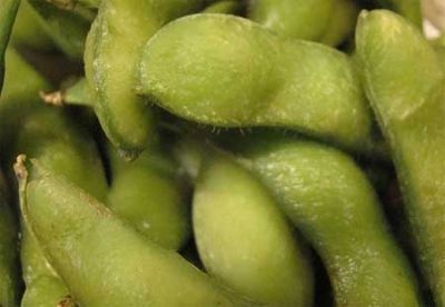I like to eat edamame straight from the shell! How about you?