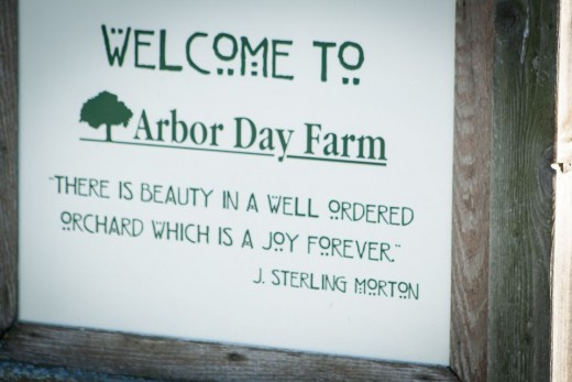 Nebraska City is the home of Arbor Day and where Arbor Day was founded