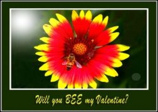 Will You BEE My Valentine