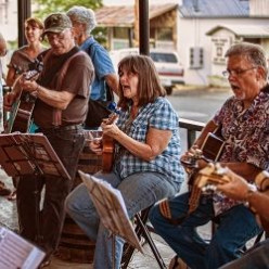 Have You Tried Bluegrass Jam?