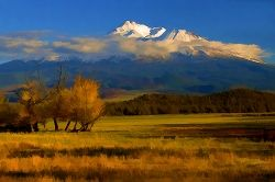Fall Colors In Shasta Valley