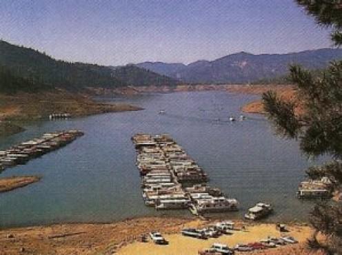 Boats along the marinas in Lake Shasta. Photo - Nemingha.