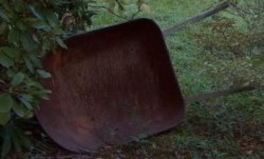 Antique wheelbarrow found at an auction
