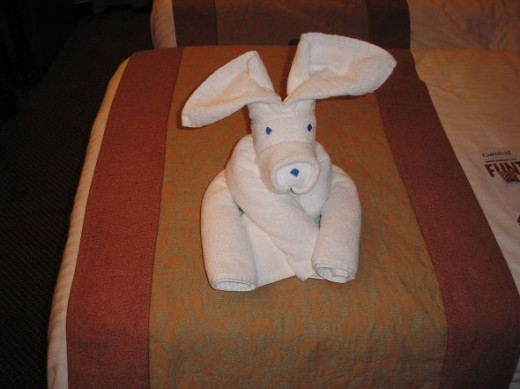 These are our towels.  The cabin boys always made a different animal and left it on our beds each evening.