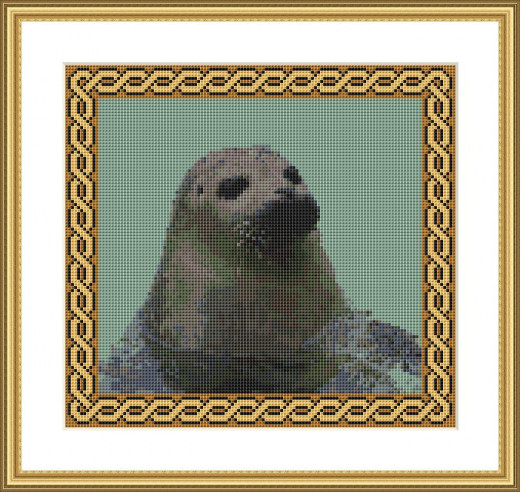 Picture Credit  'Grey Seal'  - designed by the Author, faeriesong, for celtic-cross-stitch.com