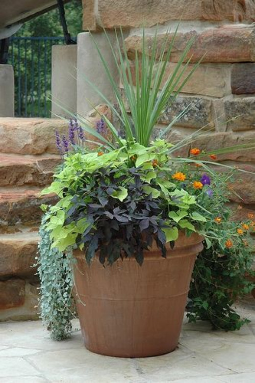Large outdoor urns and decorative planters hubpages for Outdoor decorative plants