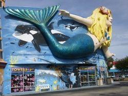 Mermaid Giftshop