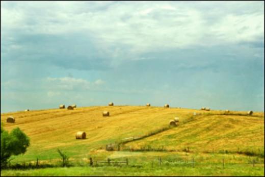 Farmland of his youth