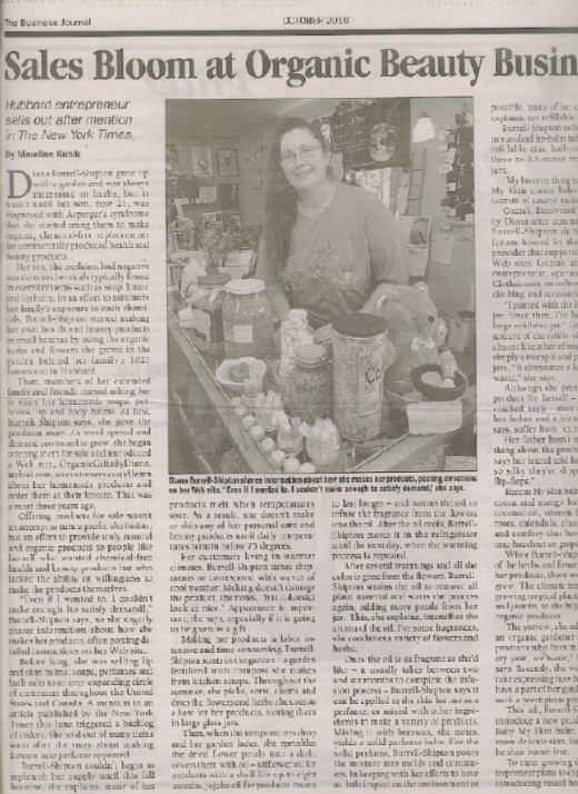 Diana's Business Journal article
