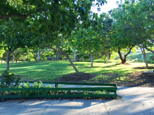 The starting point feels like a park. Take some time to appreciate this beautiful area and make use of the restrooms if you need to.