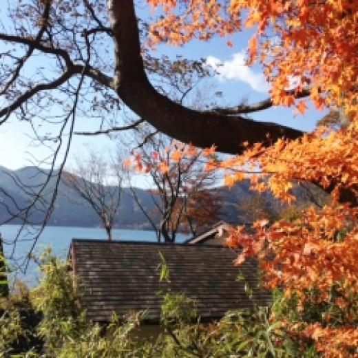 Autumn in Hakone