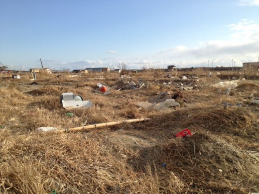 This was where the tsunami hit the hardest. This used to be a thriving town full of people.