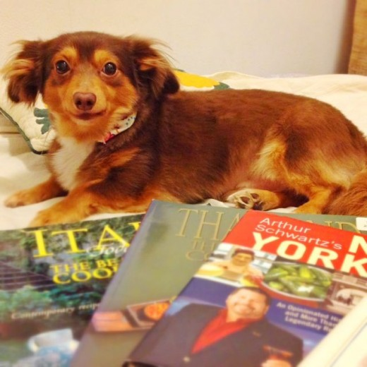 My dog Justing, posing with some of my books.
