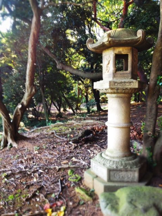 The Japanese gardens is one of the most beautiful areas of the park.