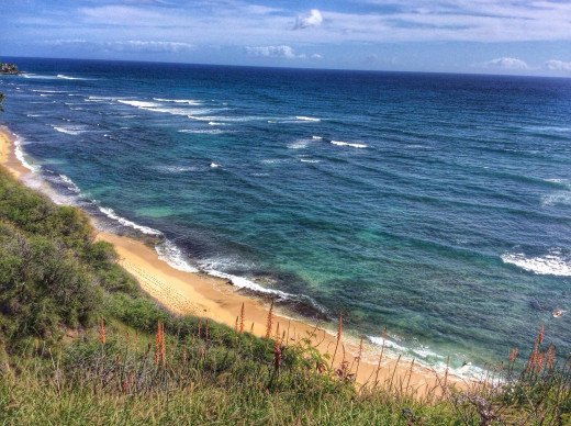 Exploring the far end of Waikiki.