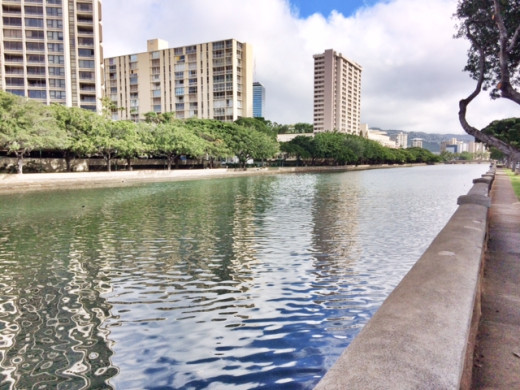A walk along Ala Wai Canal, one of my favorite things to do.
